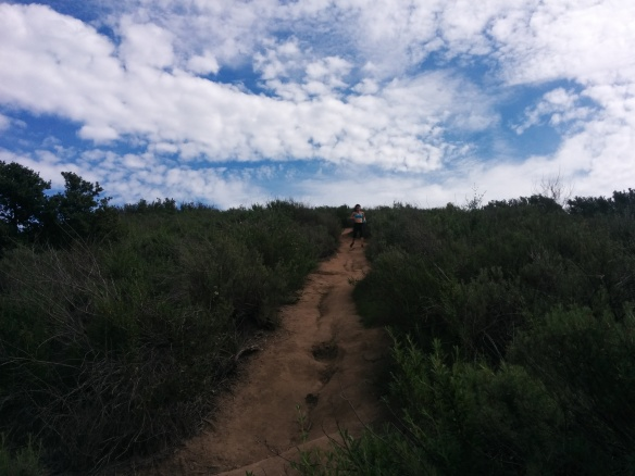 Mariposa Trail.jpg